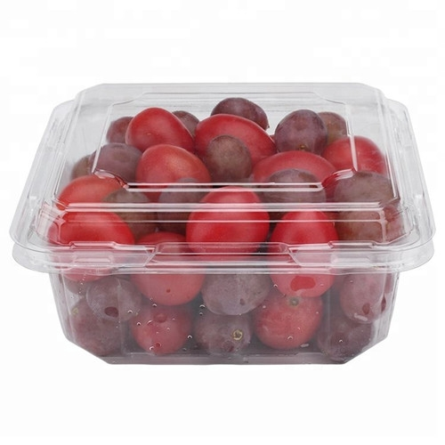 PET fresh fruit blister container clamshell packaging