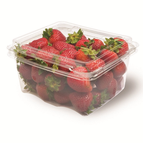 Transparent Clamshell Fruit Packaging Container